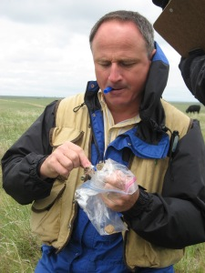 Paul Stapp handles a thirteen-lined ground squirrel, one of the most common small mammal species in shortgrass steppe at the Central Plains Experimental Range.