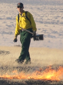 David Augustine conducts a prescribed burn in shortgrass steppe at the Central Plains Experimental Range.