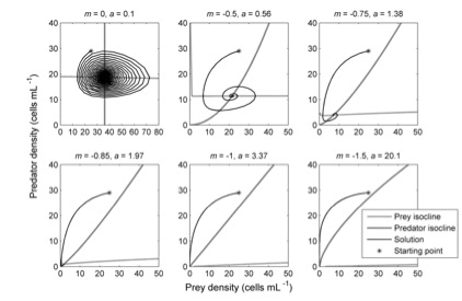 Figure 4. Predator-prey dynamics, here simulated for Didinium – Paramecium, vary from oscillatory to deterministic extinction due to the correlated nature of the interference and exploitation parameters.