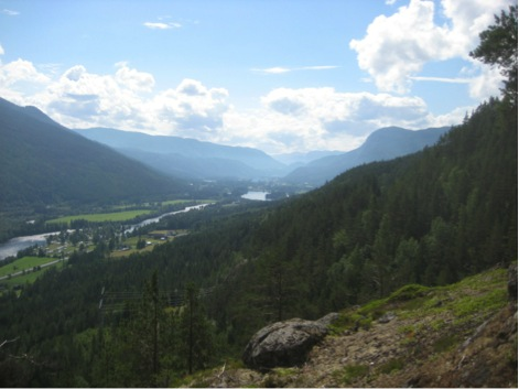 Our study site Hallingdalen, a valley in central Norway, is a multiple-use landscape.