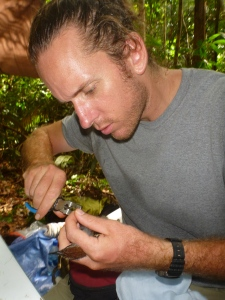 Jared Wolfe banding a Wing-banded Antbird at the study site in the central Amazon - 2nd picture