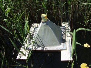 Photo 4: Emergence trap used in our study.