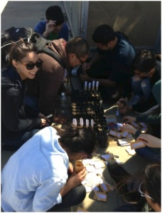 Undergraduate students contributed to this study by aiding in both planting and harvesting. Here they are shown planting seeds for species pairs at the start of the experiment.