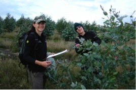 Trait assessments under way at the Eucalyptus globulus trial site by authors Christina Borzak (left) and Julianne O'Reilly-Wapstra (right).