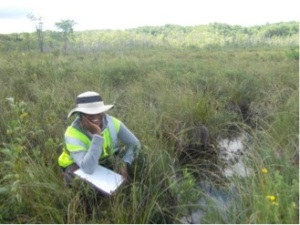 Fig. 3 Shauna-kay Rainford at Bear Swamp, NY, one of the litter collection locations(photo by Laura Martin)